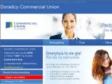 Commercial union ofe